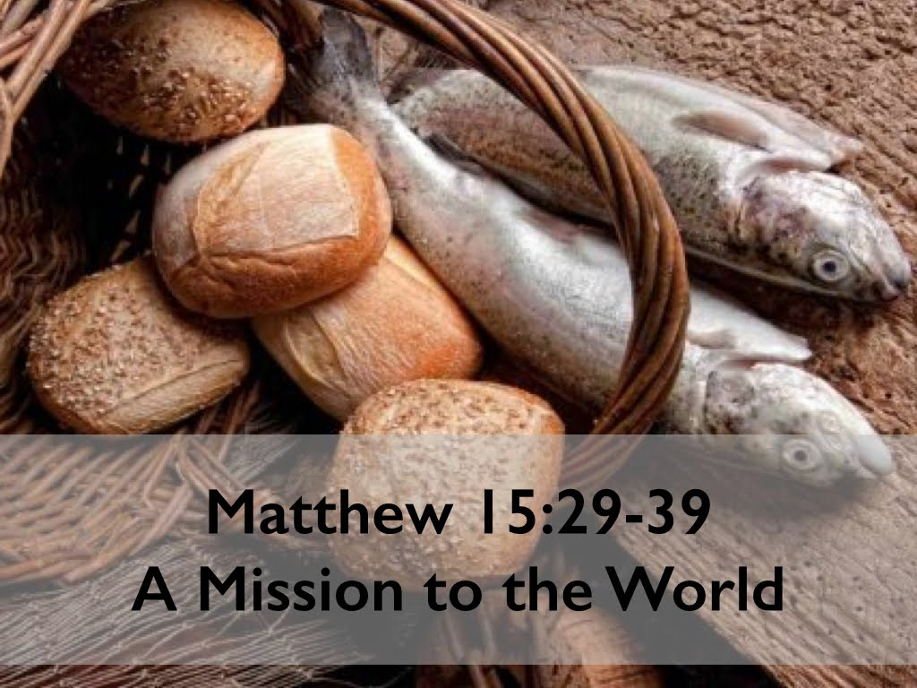 Matthew 15-29